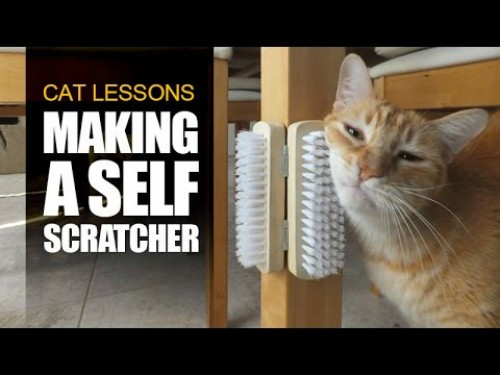 Self-Scratcher For Cats