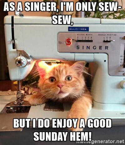 funny cat picture snarky cat memes