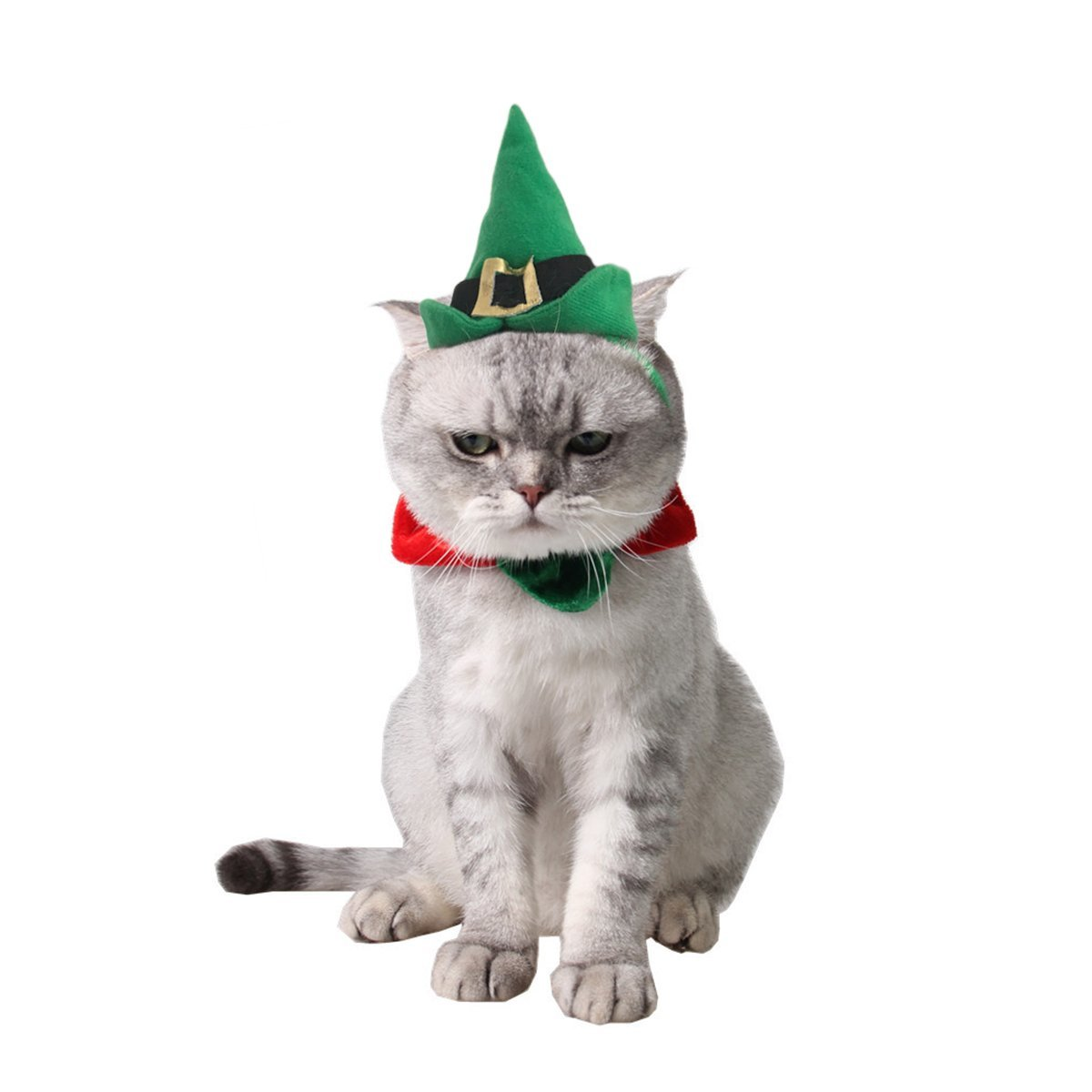 Christmas Cat Costumes That Will Get You In The Spirit