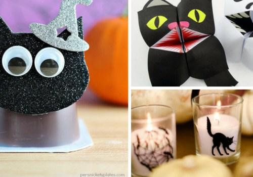 #CrazyCatLady #Halloween #BlackCatCrafts