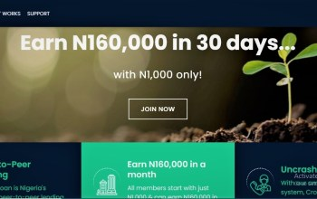 How to generate N160000 with just N1000 monthly – Crowdyloan (2)