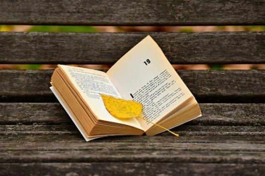 Libro abierto con una hoja otoñal.