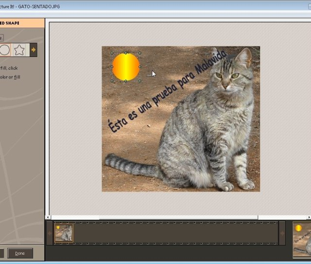 Picture It   Download For Pc Free