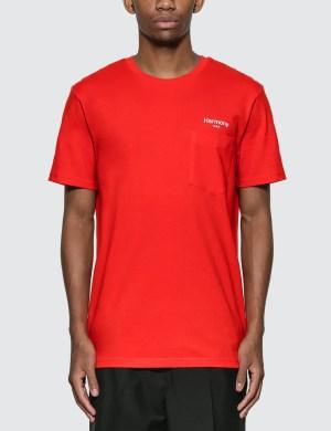 Harmony Teddy T-Shirt