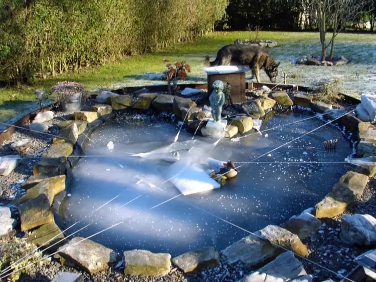 tang de jardin par Michel Gilot sur LInternaute