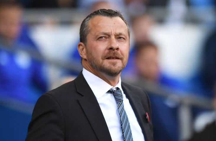 Slavisa Jokanovic guided Fulham to promotion through the Sky Bet Championship play-offs last season