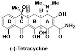 テトラサイクリン