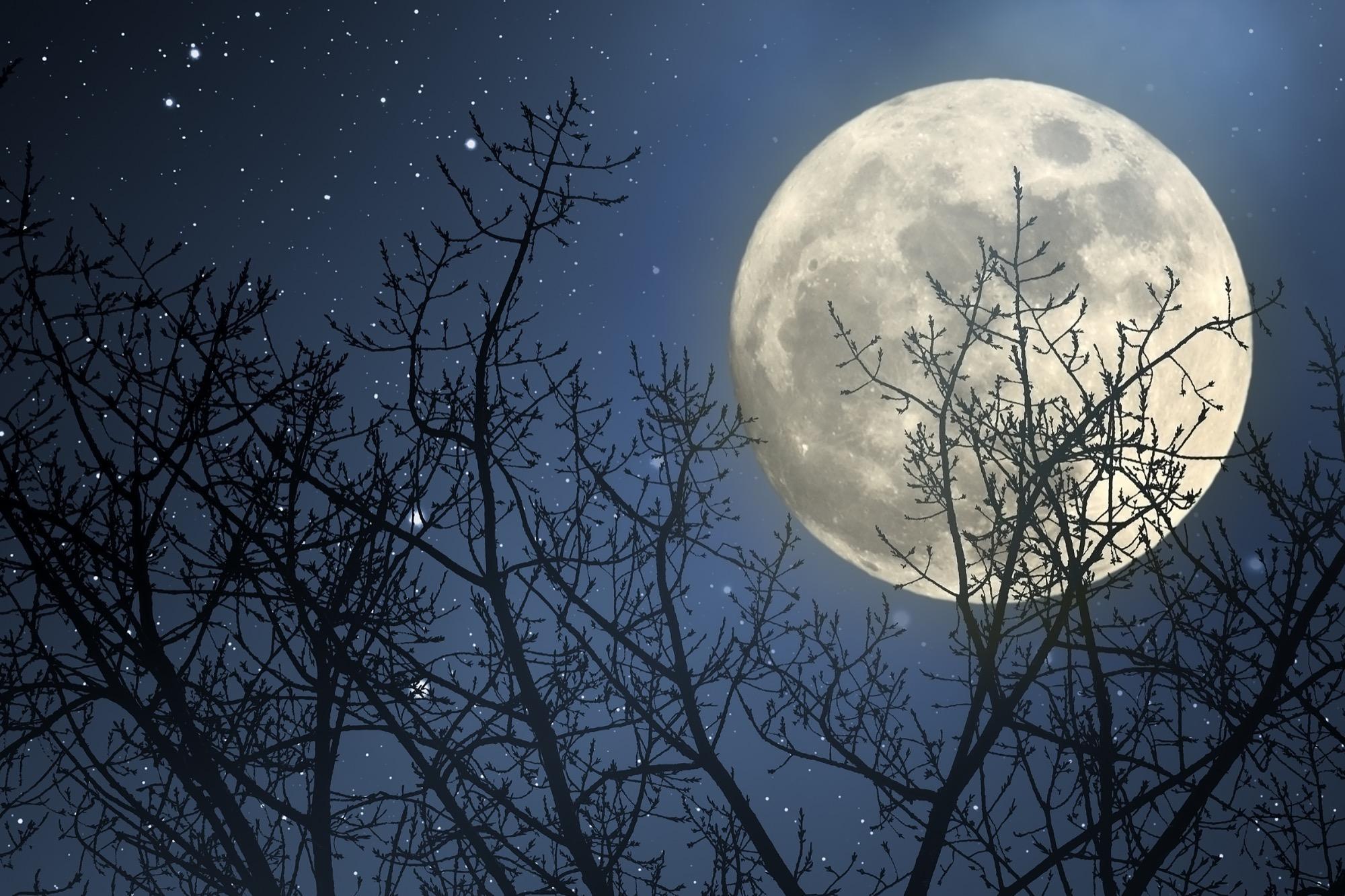 Mondkalender  was ist das eigentlich  BRIGITTEde
