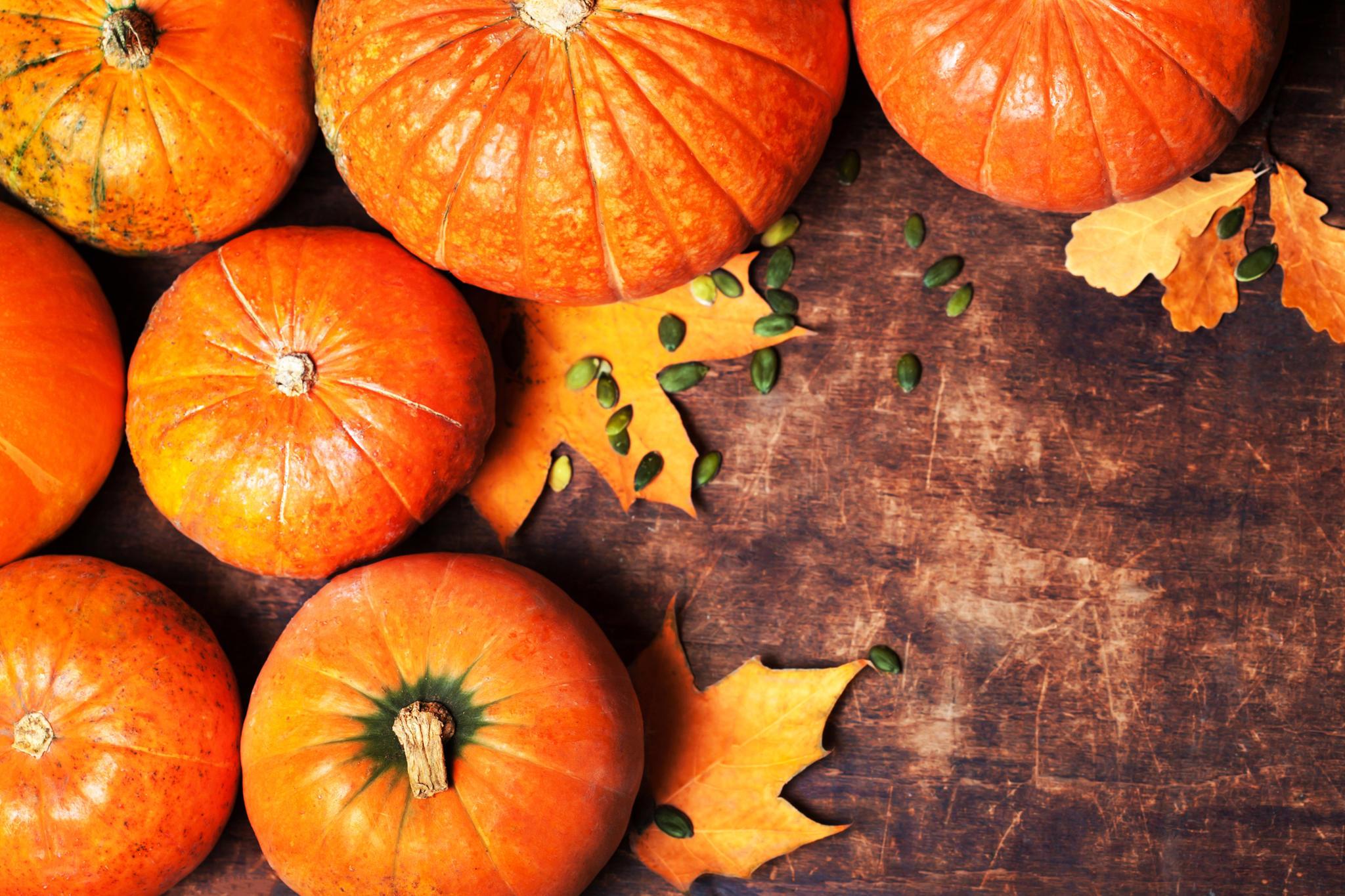 Fall Wallpaper With Pumpkins Hokkaido K 252 Rbis Tipps Und Rezepte F 252 R Den Herbst