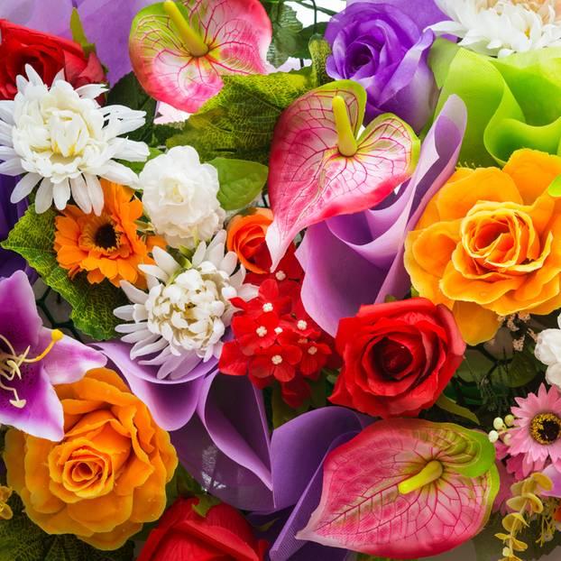 Garten Die Bedeutung der Blumen  BRIGITTEde