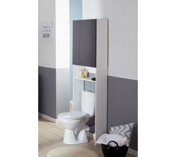 Entourage WC OLERON Gris Et Blanc Meuble De Salle De