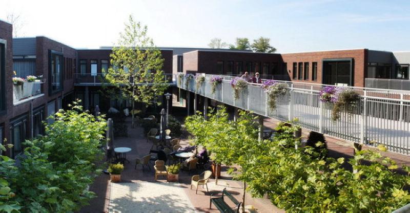 全球第一座失智村 荷蘭打造養老樂園-風傳媒