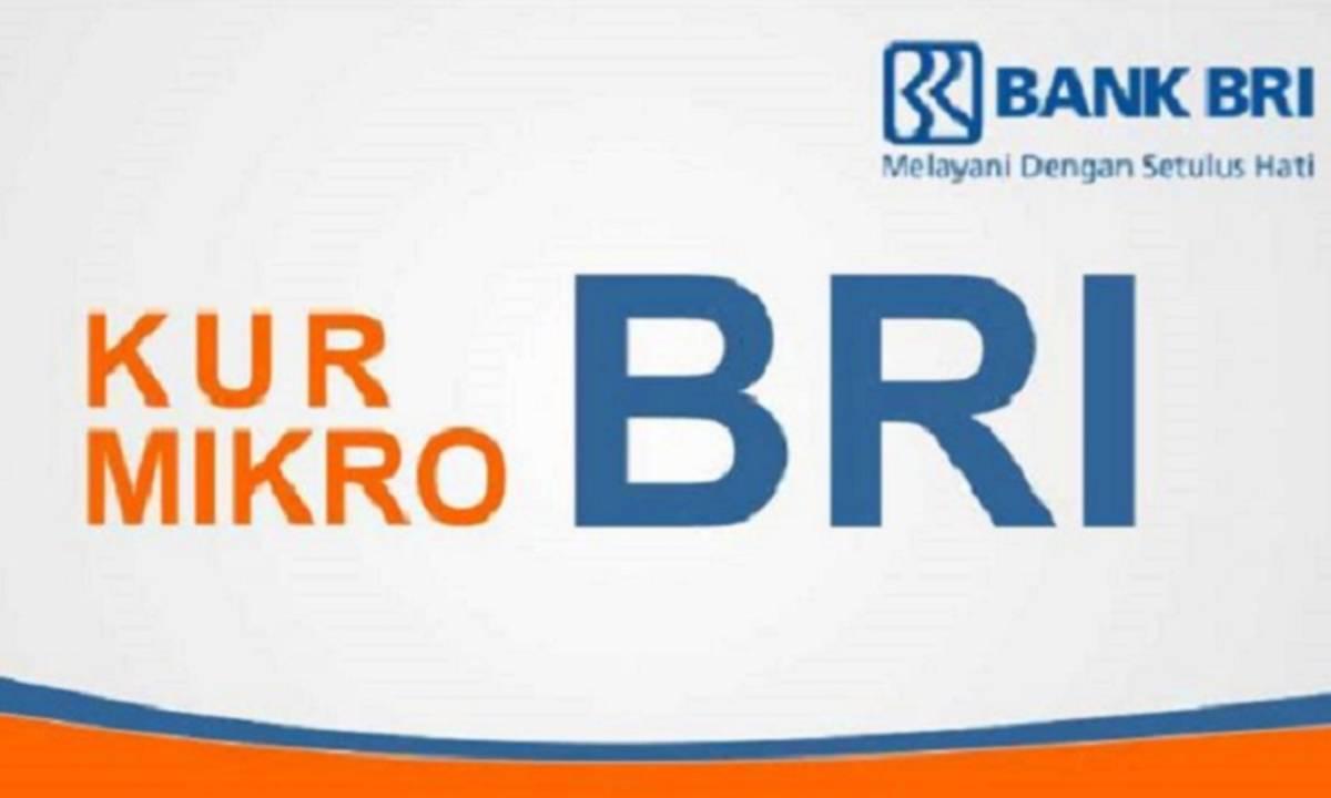 Bank maluku malut provides better services and competes,. Bunga Kur Turun Jadi 6 Di 2020 Begini Cara Mengajukannya Di Bank Bumn Cermati Com