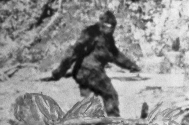 FBI tested Bigfoot hair in 30s, government documents show