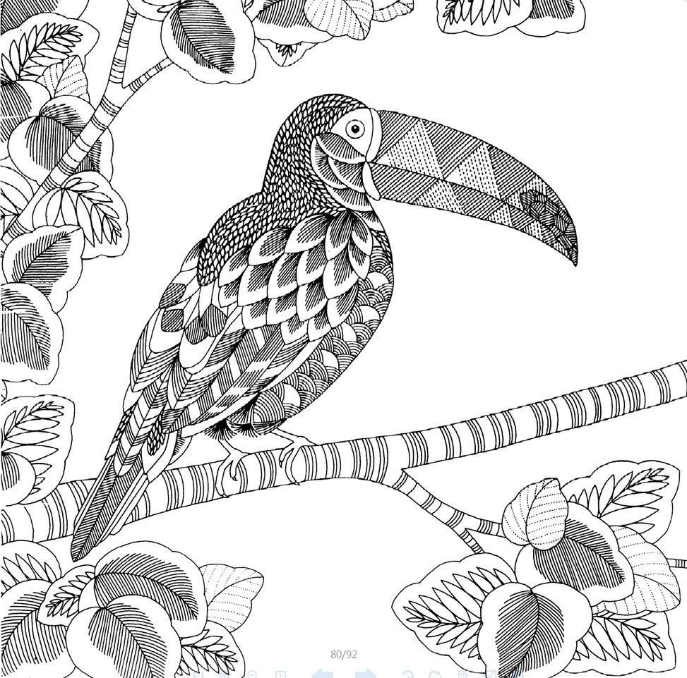 Ebook Secret Garden Style Books 11:Animal Kingdom Coloring