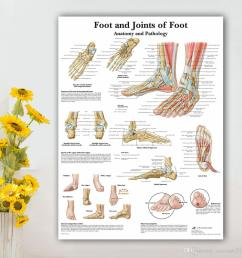 2019 foot joints of foot chart anatomy pathology poster canvas painting wall pictures for medical education doctors office no frame from cocoart2016  [ 1000 x 1000 Pixel ]