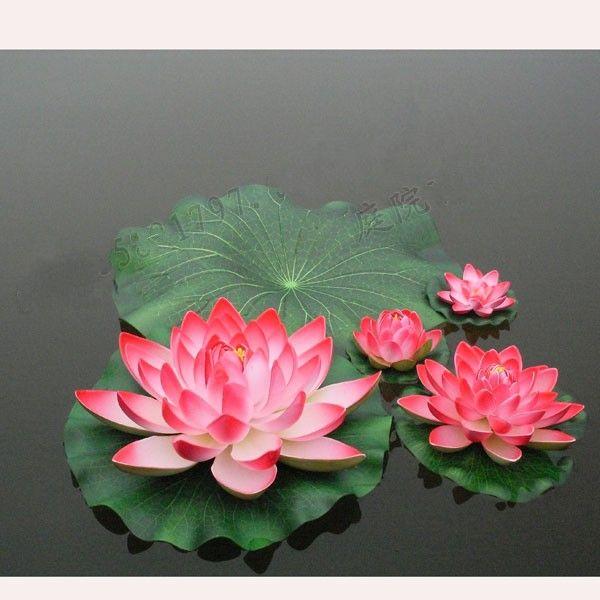 Floating Plants Information