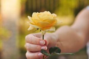 Liebe Grüße erhalten die Freundschaft