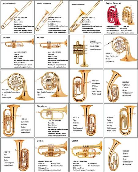 Musical wind instruments with names 7170918  bunkyoinfo