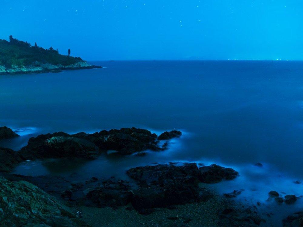 東莒無光害的環境,十分適合觀賞藍眼淚;星星點點的淡藍色螢光點亮海面,場景如夢似幻。