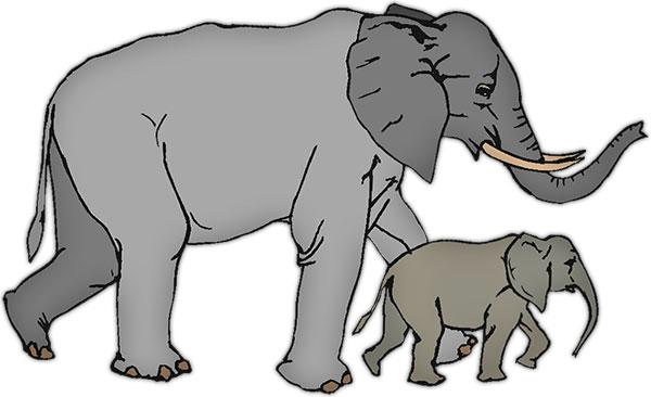 free elephant animations