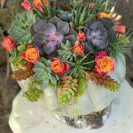 Blog Of Joy Fall Succulent Pumpkin Concord Ca Florist Flowers Of Joy Flower Delivery Concord Ca