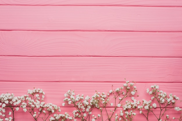 Superficie De Madera Rosa Con Ramitas Decorativas