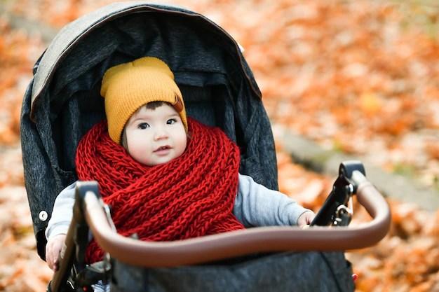 Bebê cheia de casacos e com touca em carrinho olhando para câmera