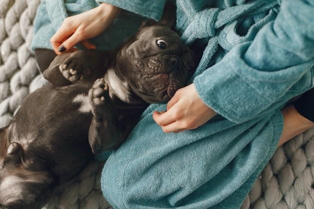 Mulher de roupão azul com bulldog preto