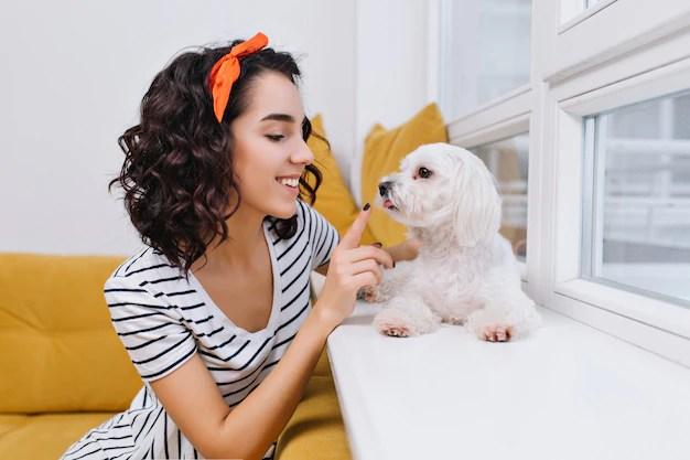 Retrato incrível alegre elegante jovem brincando com o cachorrinho no apartamento moderno. divertindo-se com animais domésticos, sorrindo, bom humor, em casa Foto gratuita