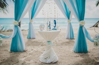Blue and white wedding aisle in a beach surrounded by palms with the sea on the background Free Photo