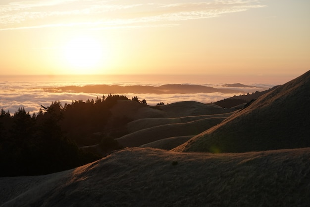 Refresh your home decor with foggy mountain photo art print. Free Photo High Hills With Forest And A Visible Skyline At Sunset On Mt Tam In Marin Ca