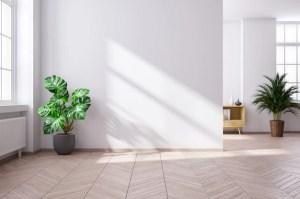 modern living interior empty render minimalist mid century 3d interiors into bring nature premium backgrounds apartment newcastle flooring wood