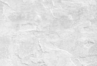 Plaster wall texture Photo | Free Download