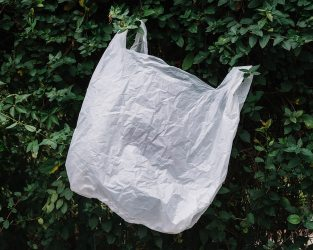 Plastic white bag in nature Free Photo
