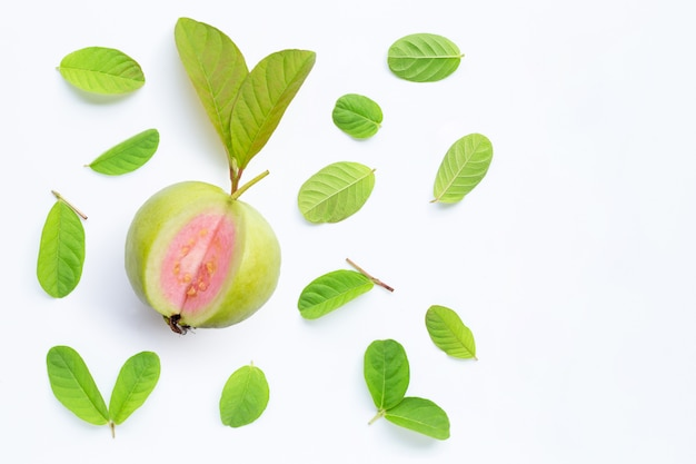 Top 20 Health Benefits of Guava Leaves (Part 2) fruit