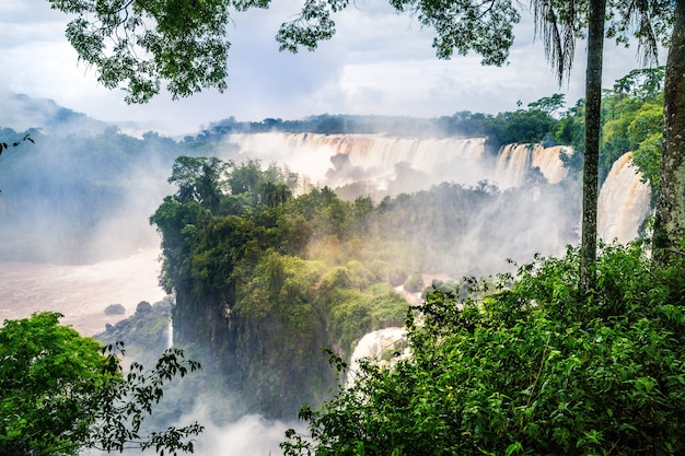 Waterfall at iguazu national park surrounded by forests covered in the fog under a cloudy sky Free Photo
