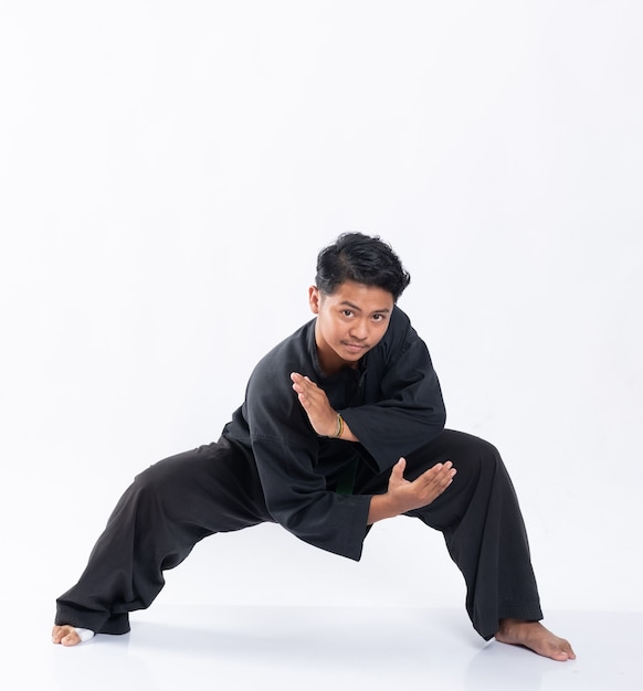 Download free perguruan pencak silat satria muda indonesia vector logo and icons in ai, eps, cdr,. Silat Images Free Vectors Stock Photos Psd