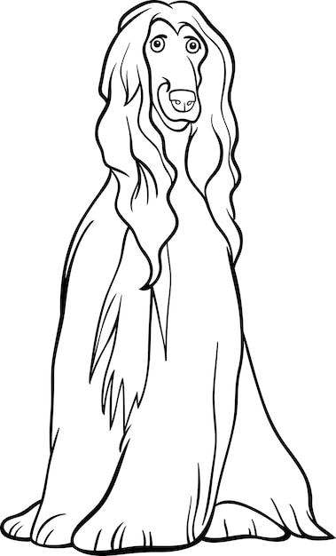 Afghan hound dog cartoon for coloring book Vector