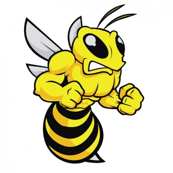 cartoon bees vectors