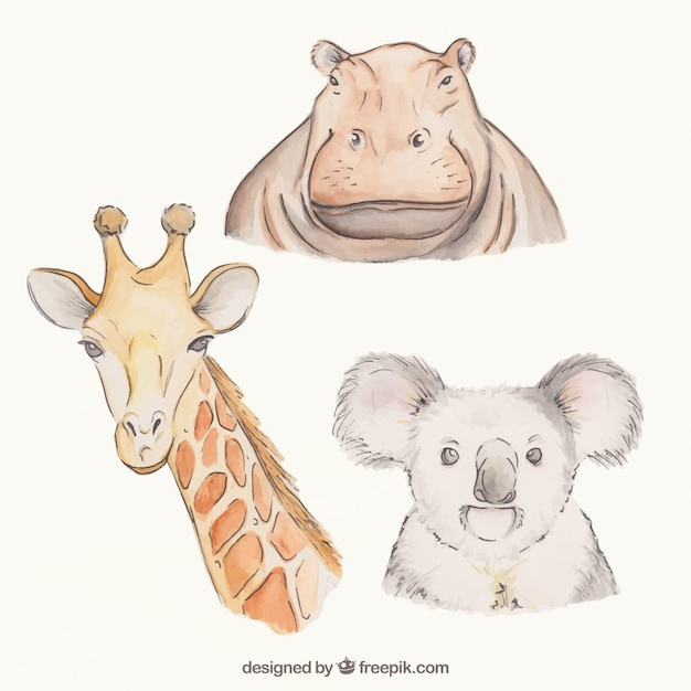 awesome hand drawn animals