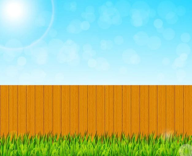 Premium Vector Backyard Garden Background