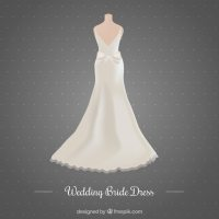 Beautiful wedding dress Vector