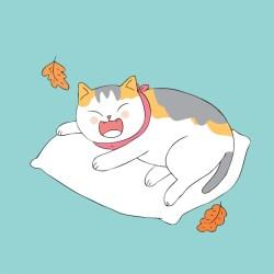 cartoon cat sleeping vector cute autumn premium ai months edit ago