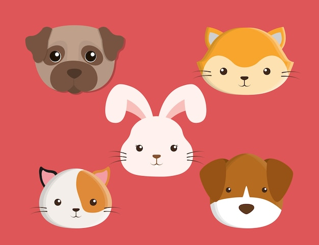cats dogs rabbit cartoon
