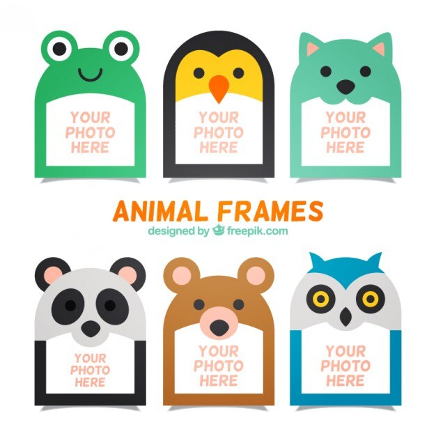 collection of nice animal