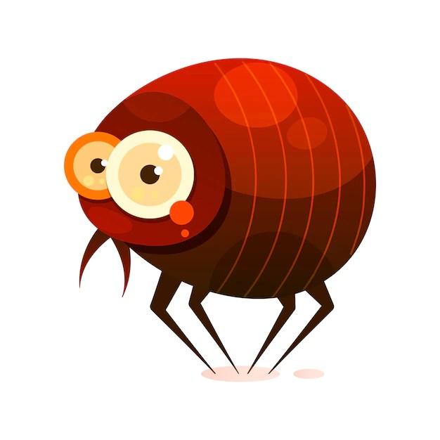 Ilustração de pulga. Remédios caseiros para pulgas.