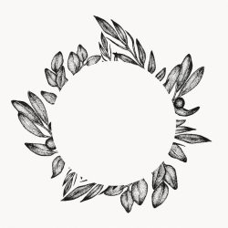 Premium Vector Greenery foliage leaf frame graphic design element isolated circle floral botanical border tropical composition