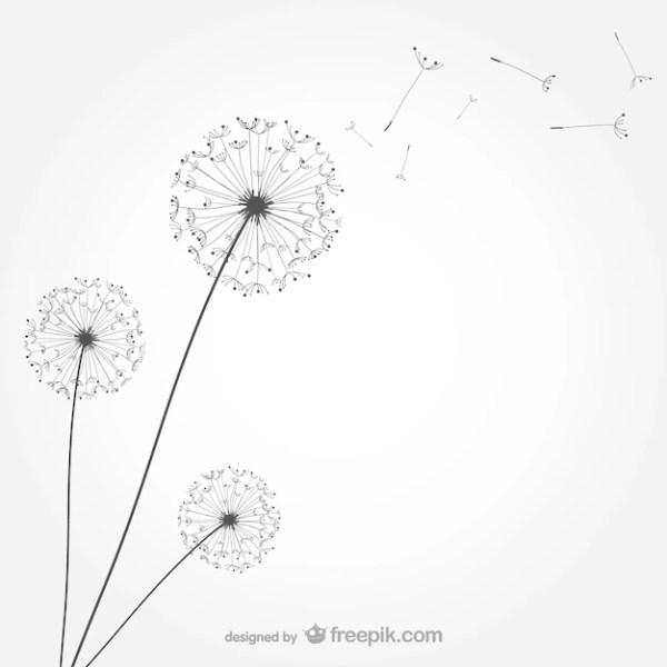 dandelion vectors and psd
