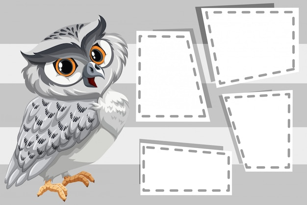 owl on blank frames